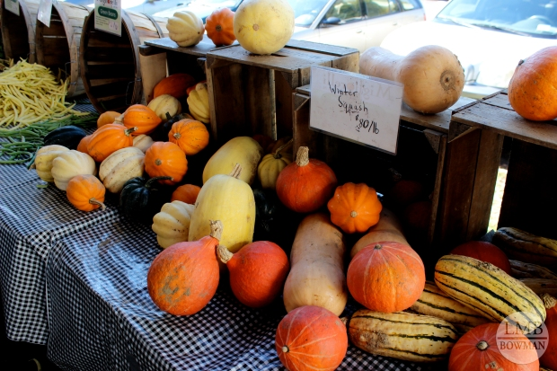Lots of winter squashes and apple this week