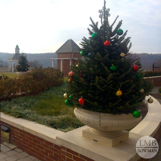 When we got back from break the CIA's campus was decked out for all the winter holidays.