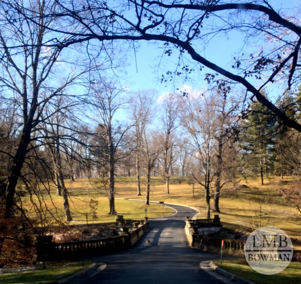 Saturday afternoon it was so beautiful out I decided to got for a walk through the Vanderbilt property