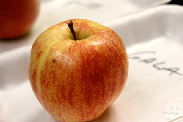 Since there is upwards of about 2,500 apple varieties in the US we only scratched the surface of apples in class.