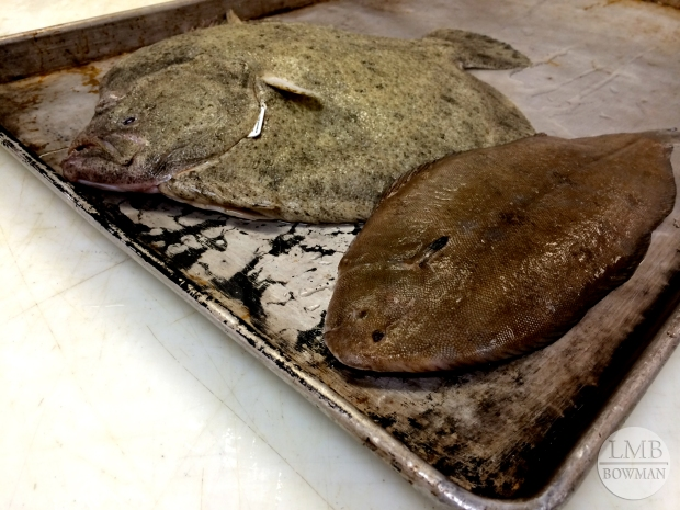 Turbot (back) and Dover Sole (front)